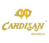 cardisan-01.jpg